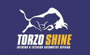 Torzo Shine Logo Design